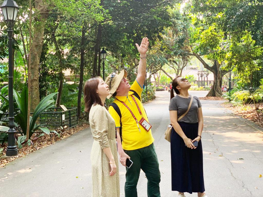 gaji tour guide